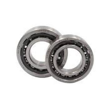 BARDEN C118HC Grease-lubricated sealed angular contact ball bearings