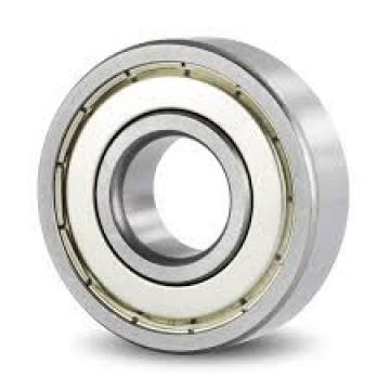 30 mm x 55 mm x 19 mm  NACHI NN3006K High Running Accuracy Precision Bearings