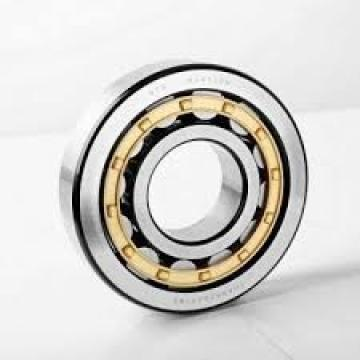 40 mm x 68 mm x 21 mm  NSK NN3008MBKR Interchangeable with open TAC serie Precision Bearings